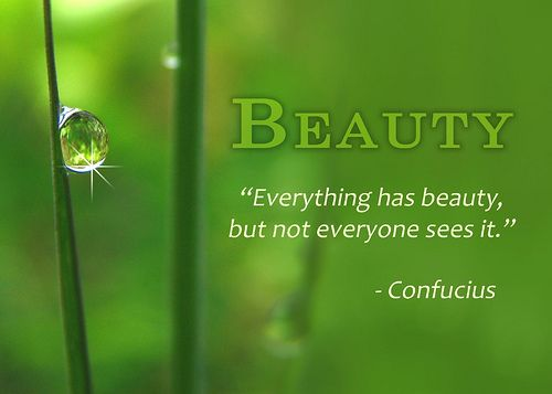 """""""Everything has beauty but not eveyone sees it"""" ~Confucius"""