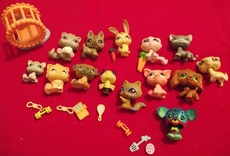 Lot: 14 Littlest Pet Shop Figures & Accessories in Ashley_Marie's Garage Sale in Delta , British Columbia for $7.00. Lot: 14 assorted Littlest Pet Shop animal figures with some accessories.