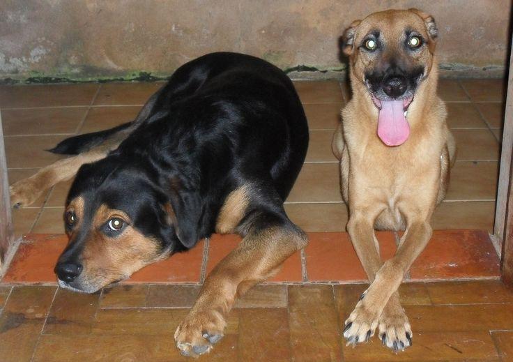 Titã e Roberta <3
