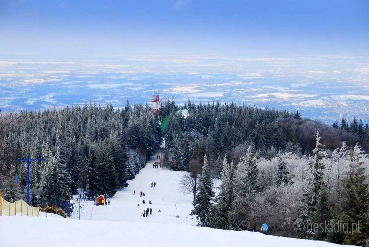 Szyndzielnia Bielsko-Biala | Panorama na stok ze szczytu Szyndzielni w Bielsku-Białej .