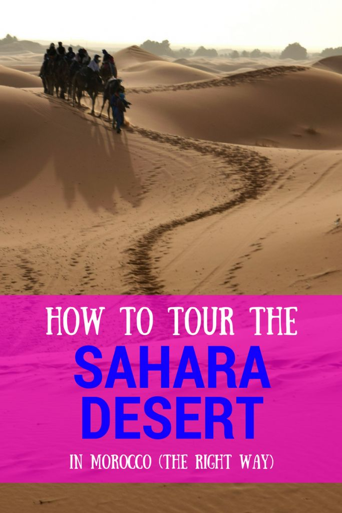 How to tour the Sahara Desert in Morocco the right way (for you!). Learn the pros and cons of group tours, and above all--make sure you see the Sahara Desert while in Morocco!