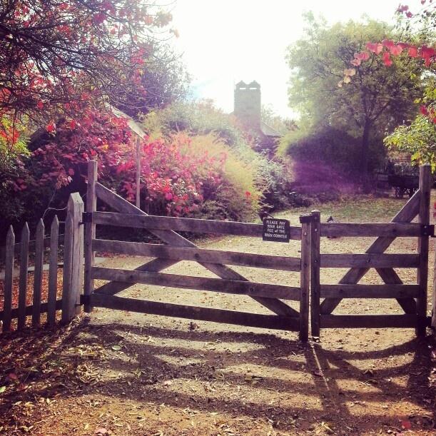 Lanvandula Swiss Italian Farm, Daylesford, Victoria (image by: instagram @ brittanyjanem)