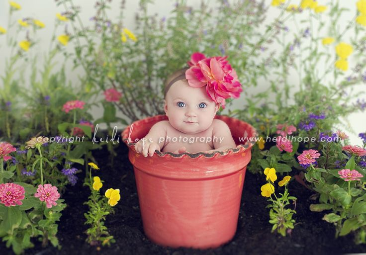 : Baby Childhood Portraits, Baby Pics, Photo Ideas, Flowers Baby, 3 Months Photo, 3 Month Photos, Baby Photography, Photography Baby, Photography Ideas