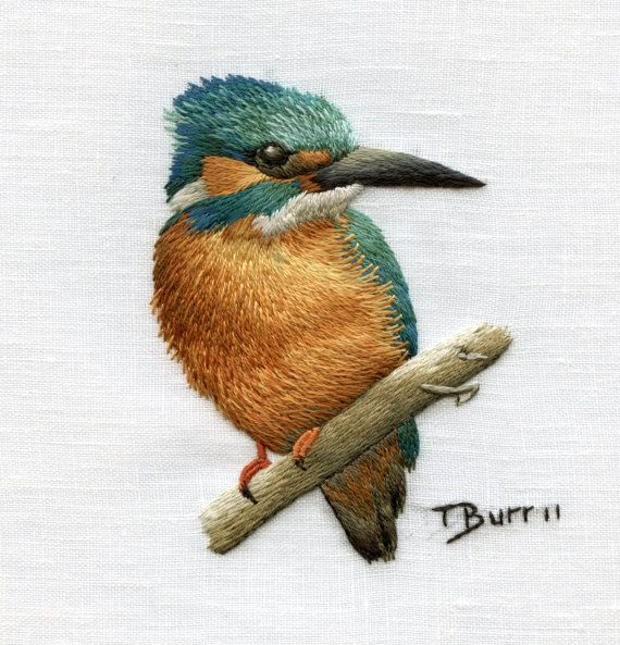 Common kingfisher trish burr cape town south africa etsy