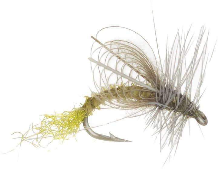 Montana Fly Company CDC Winged Emerger - 6