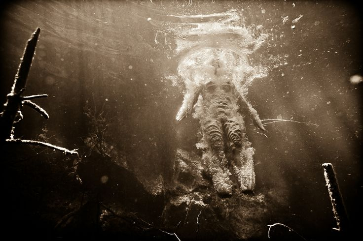 This photographic underwater  series is a visual voyage of metamorphosis; into the Subconscious waters of the mind. The ultimate metaphysical quest into the undercurrent of consciousness.  www.Omni-Phantasmic.com  NeilCraver©2013