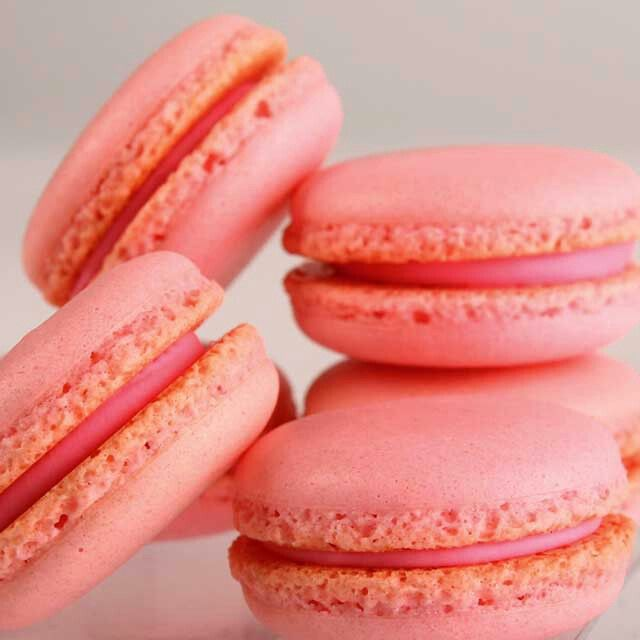 """Let me tell you a bit about myself. My name is """"Macaron"""" or """"Gerber,"""" but between the two of us, I prefer to be called """"Macaron."""" #tulipchocolate #macarons"""