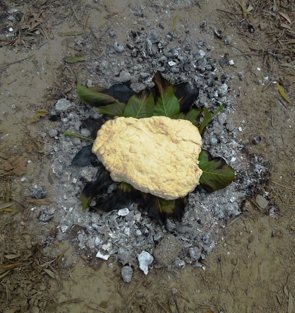 Byzantine- style bread, baked on hot ashes.