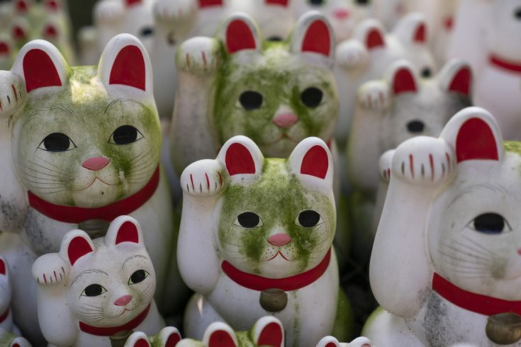 """Inside Tokyo's Buddhist Temple Devoted to """"Lucky"""" Cats"""