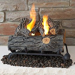 Real Flame 18-inch Convert-To-Gel Log Set - This is super cool for the Living Room fireplace but it doesn't look as modern as the glass fireplace i really want... we'll see.