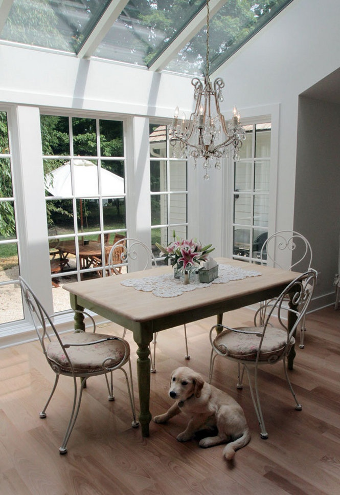 Dogs love conservatories too...