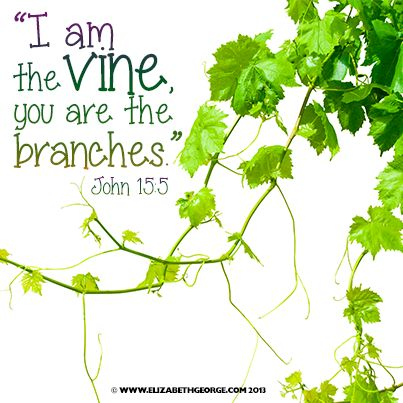 58 Best I Am The Vine You Are The Branches Images On