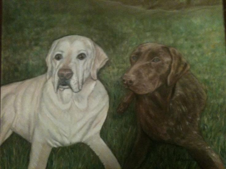 White labrador puppies michigan