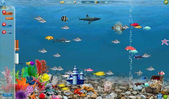 Fish Tank Moving Desktop Backgrounds | been fish, samsung software fish in ever hp underwater apk, wallpaper ...