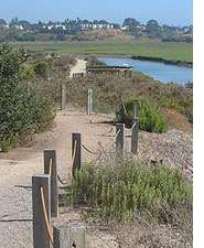 Hike and visit the Nature Center at San Elijo Lagoon in Cardiff by the Sea