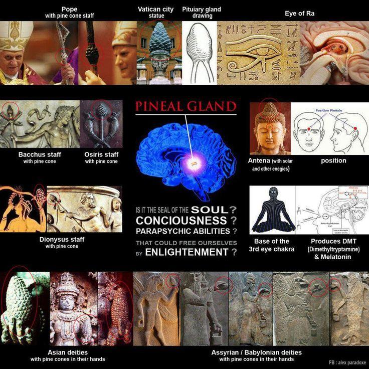 Pineal gland - The Third Eye ~ how long has its importance been known and why doesn't the western world put more recognition on its significance (floride destroys it for example)