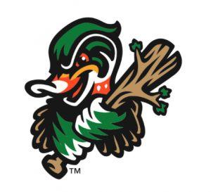 Down East Wood Ducks Baseball Logo | Down East Wood Ducks 8 Wilmington Blue Rocks 7