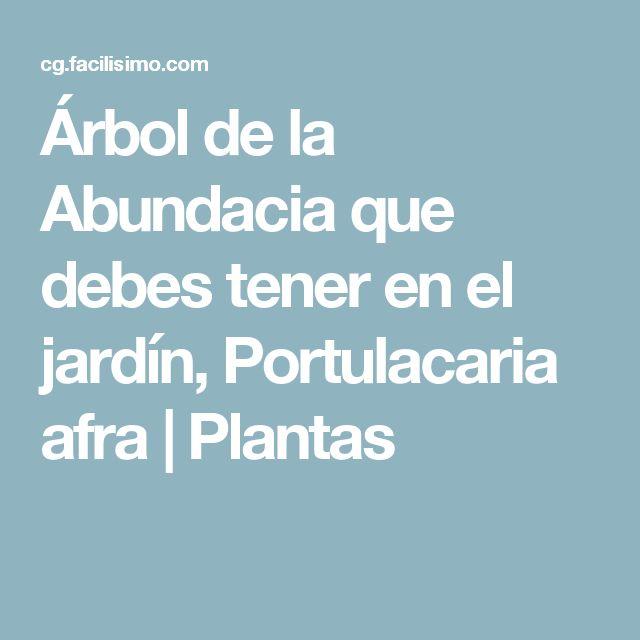 Árbol de la Abundacia que debes tener en el jardín, Portulacaria afra | Plantas