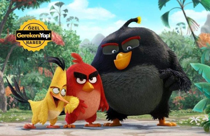 Angry Birds Filminden İlk Görüntü!