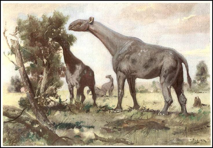 213 besten Prehistoric Mammals Bilder auf Pinterest | Dinosaurier ...