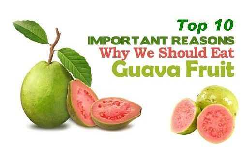 Top 10 Health Benefits of Guava Fruit - Guava Fruit is extraordinarily rich in lycopene, vitamin C, and antioxidants that are good for skin. Learn more here.