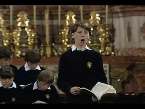 J.S. Bach - Johannes-Passion - Es ist vollbracht - alto aria