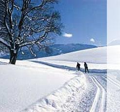 http://www.pichlmayrgut.at/de-winterurlaub-schladming.htm  Langlaufen in der Schladming-Dachstein-Region.