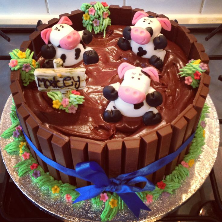 Cow's in mud chocolate cake