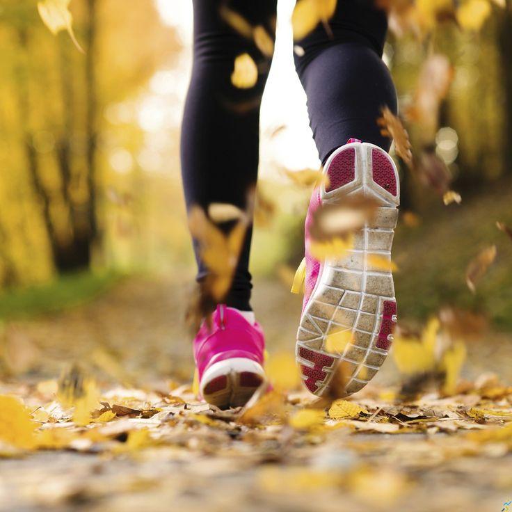 Notre coach running vous propose un plan d'entraînement pour 10 km adapté à…