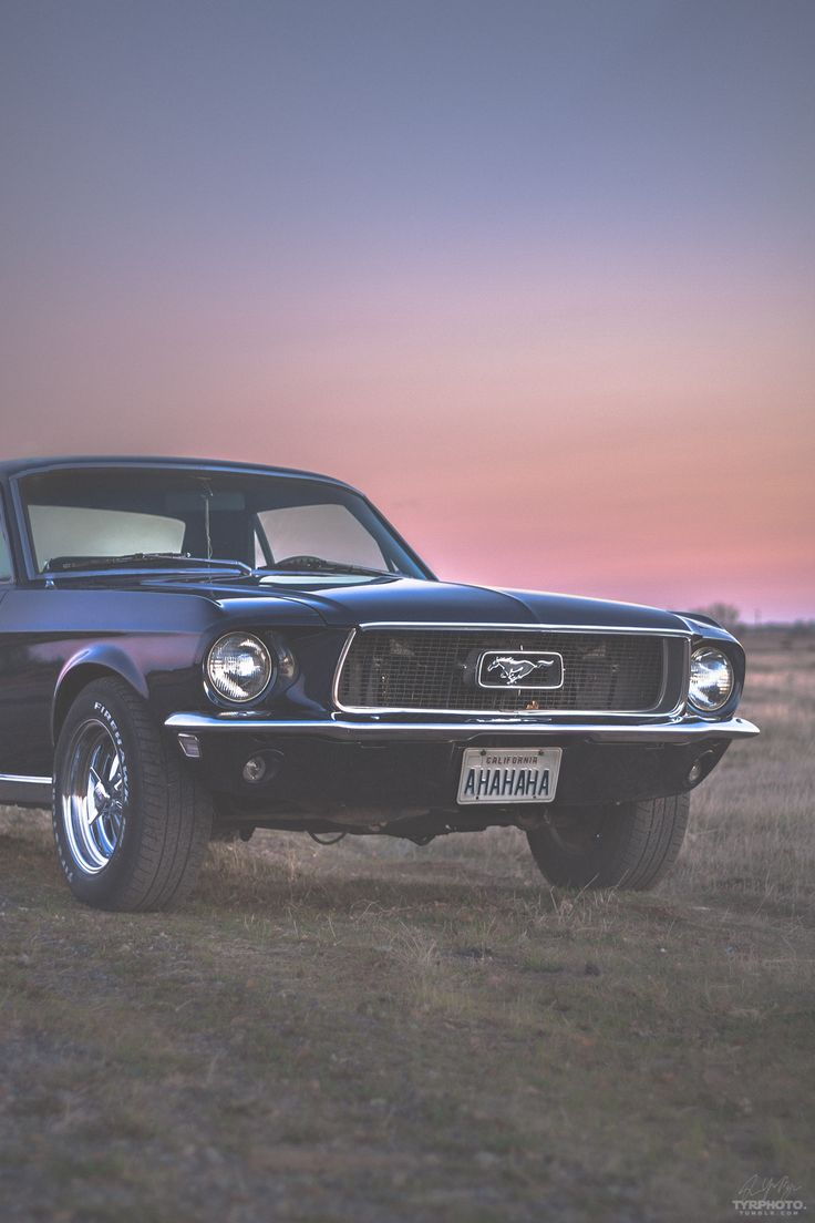 Mustang girl 1967 mustang old cars ford mustangs cars motorcycles dream cars muscle cars classic cars ponies
