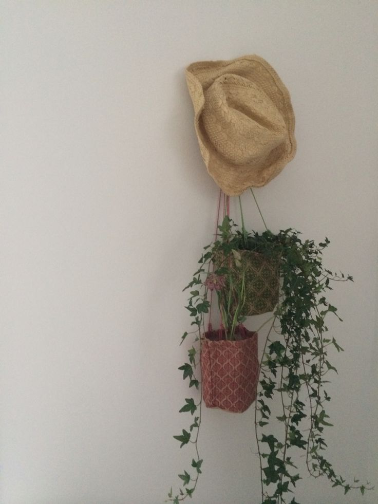 Sweetest hanging pots Aussie style