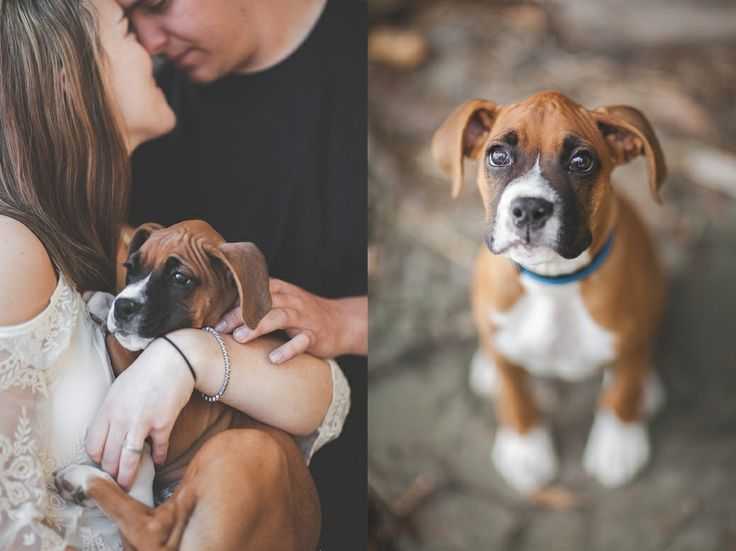 summer couples photo session with dog| Samantha J Photography