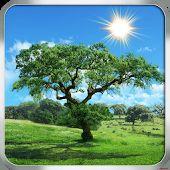 Fantastic Nature Lite