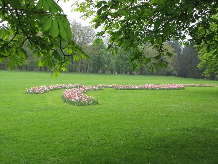 Tulipanowe rabaty.
