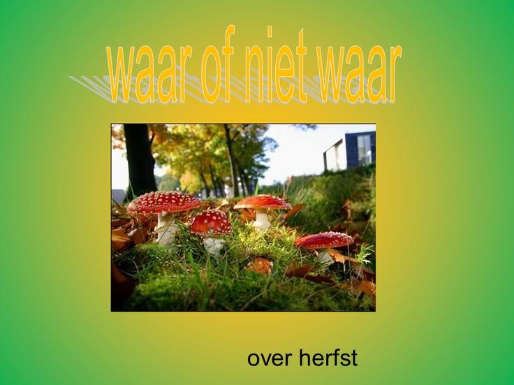 Digibordles van Margriet van Diepen over de herfst    http://leermiddel.digischool.nl/po/leermiddel/db7cc660f1079c01f16a5ea45f3dd8af?s=4.50