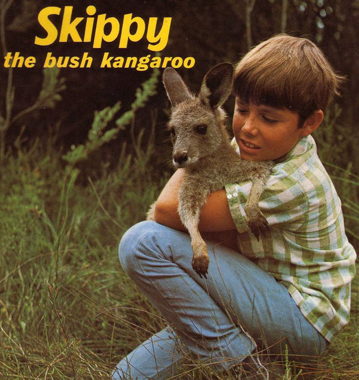 1966, Television: Skippy (The Bush Kangaroo) - even us kids knew it was a fake paw but we loved it anyway