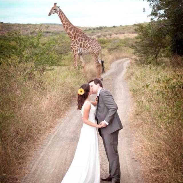 Gorgeous South African wedding pic