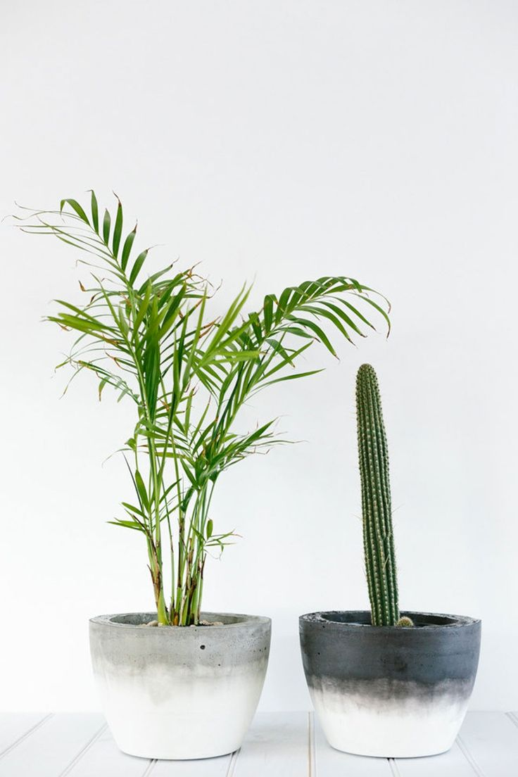 DIY these concrete planters