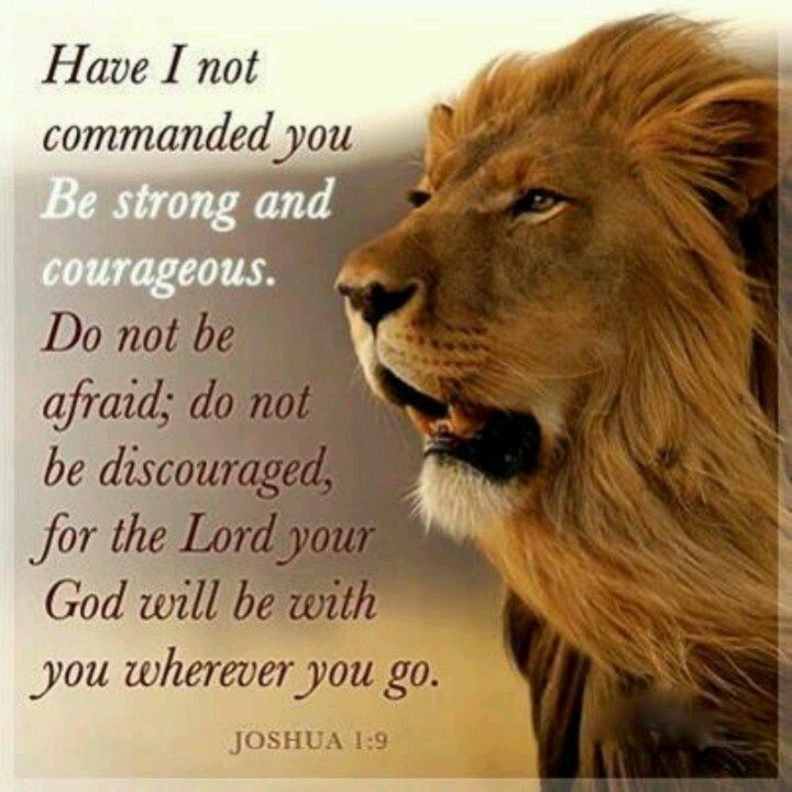 Bible Quotes About Courage. QuotesGram