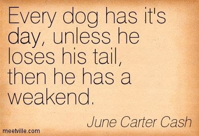 Every dog has it's day, unless he loses his tail, then he has a weakend. June Carter Cash