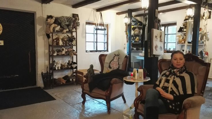 Kananlento shop