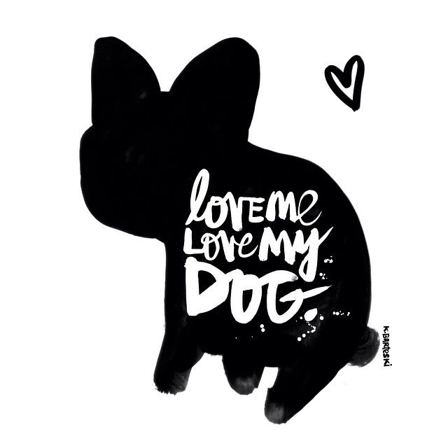 'Love me, Love my Dog', especially my French Bulldog!  #kbscript #frenchbulldog #frenchie