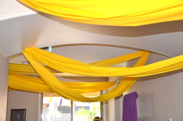 Tangled Birthday Party: Cute Idea! Maybe use Dollar Store Table cloths cut in half lengthwise & taped end-to-end. :)