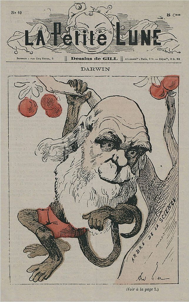 Caricatura de Charles Darwin como um macaco na capa de La Petite Lune (agosto de 1878), uma revista satírica parisiense publicada por André Gill de 1878 a 1879.