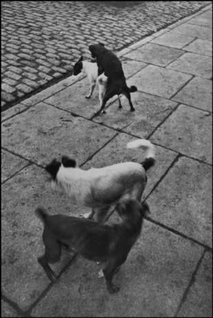 PARIS—1932. © Henri Cartier-Bresson / Magnum Photos
