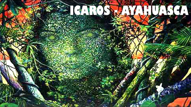 ICAROS CHAMANICOS - Ayahuasca, Cantos for travel in Ayahuasca ceremonies...