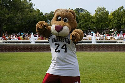 11 Reasons Why You Should Come to College of Charleston | Her Campus