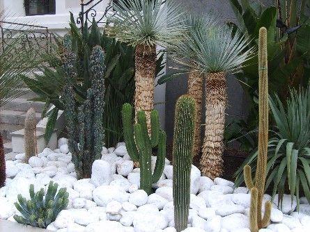 Jardin sec, galets de marbre blanc, Pieri Jardins , Pieri jardins création, création  jardin Var