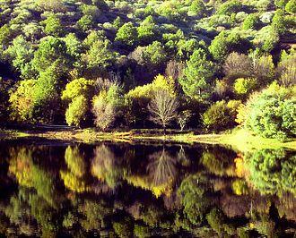 pantano de Arenas de San Pedro