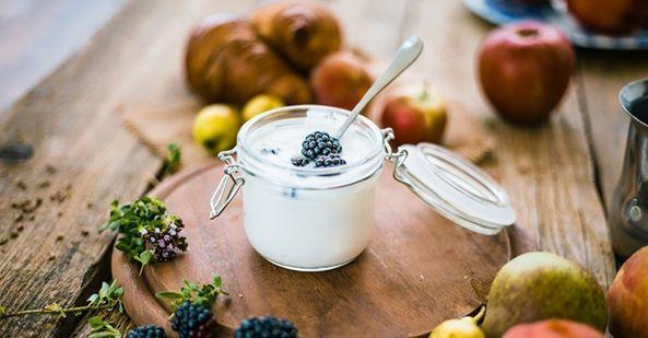 Joghurt Ungesund